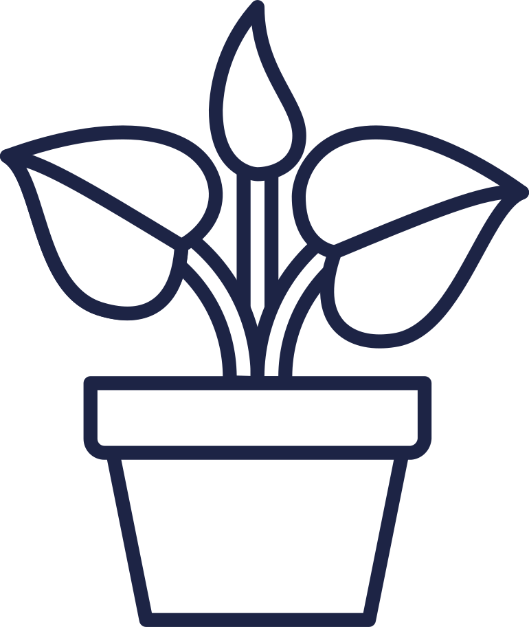 style plant line images in PNG and SVG | Icons8 Illustrations