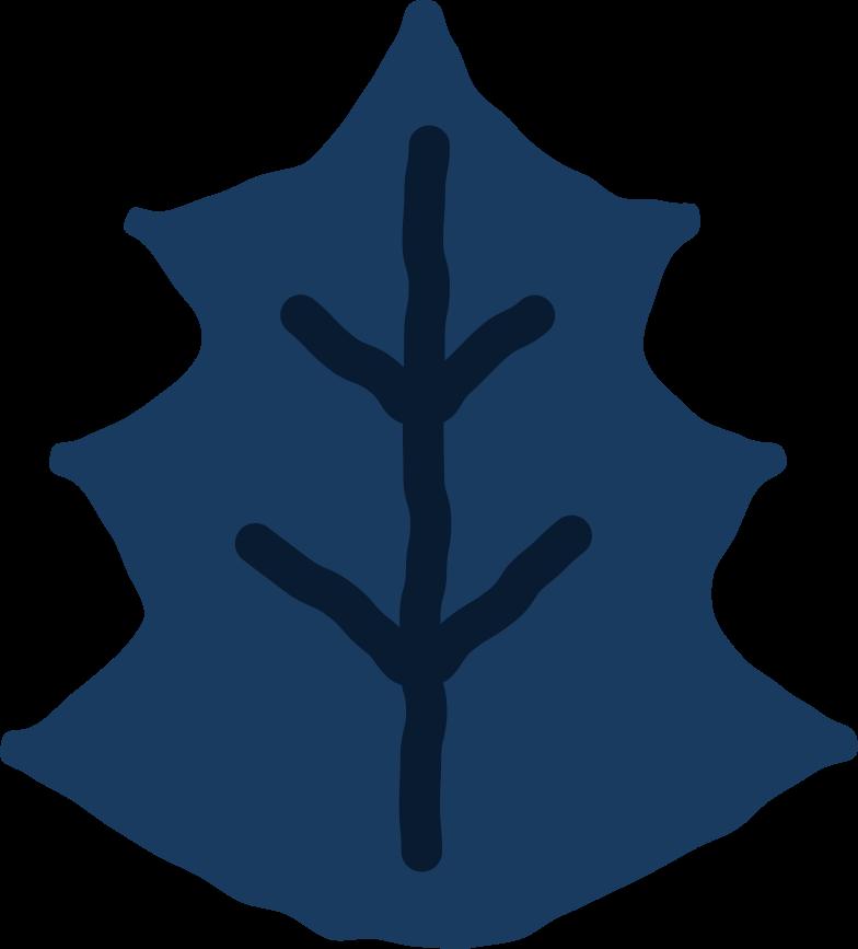 mistletor leaf Clipart illustration in PNG, SVG