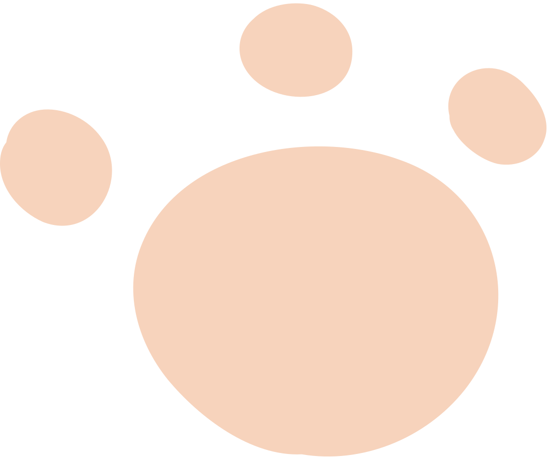 paw Clipart illustration in PNG, SVG