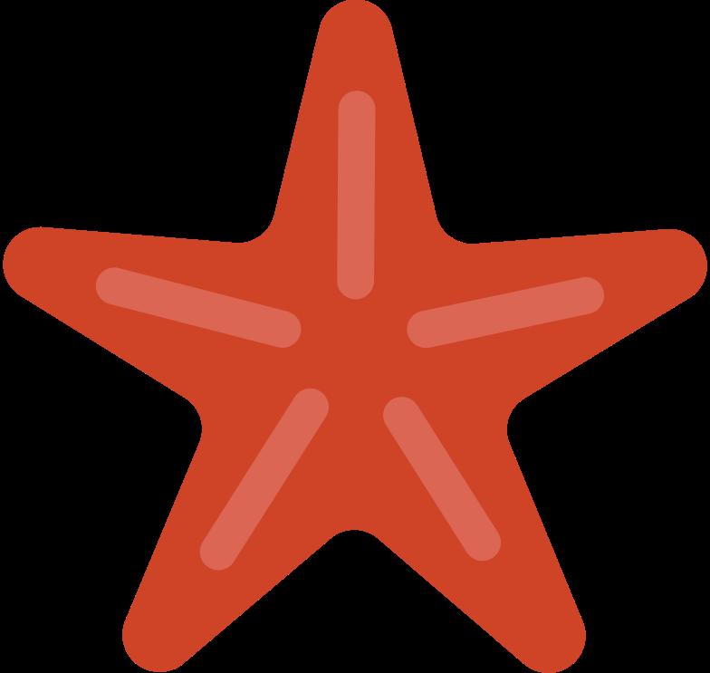 seashell star Clipart illustration in PNG, SVG