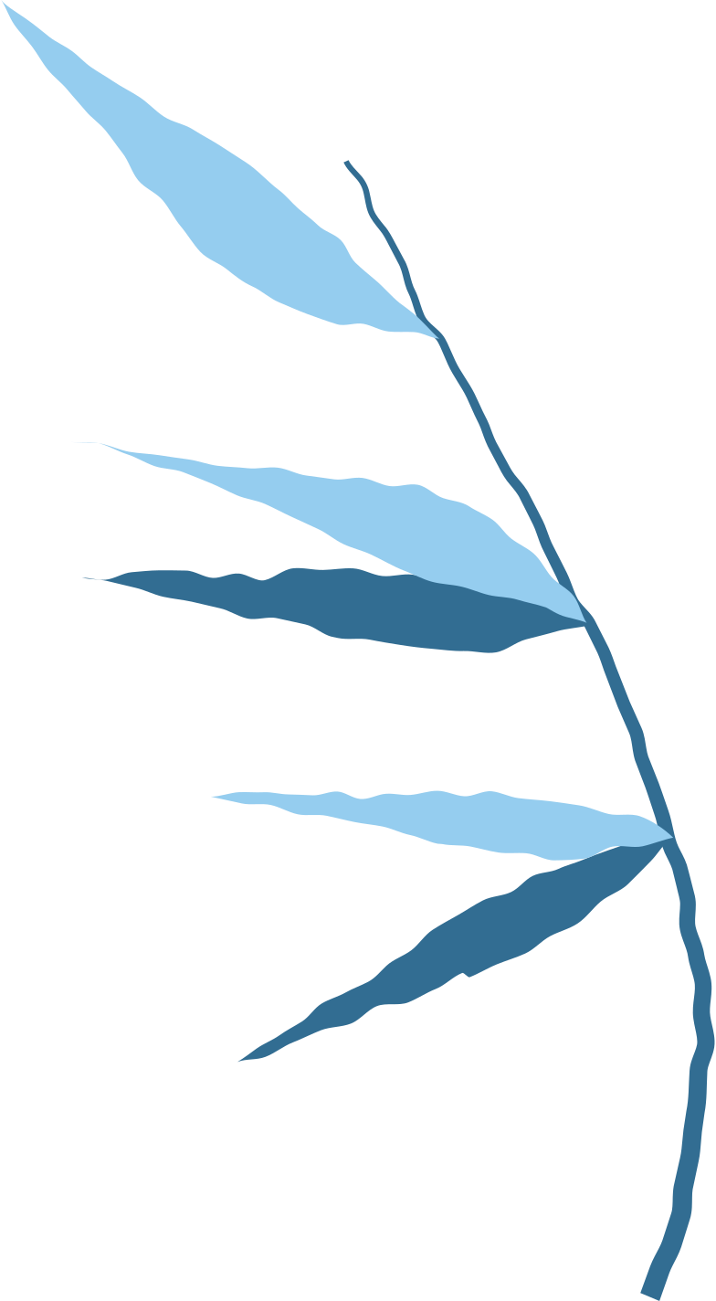 bamboo branch Clipart illustration in PNG, SVG