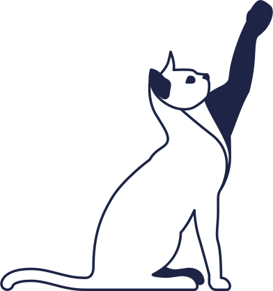 style cat line images in PNG and SVG | Icons8 Illustrations