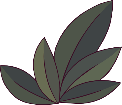 style plant images in PNG and SVG   Icons8 Illustrations