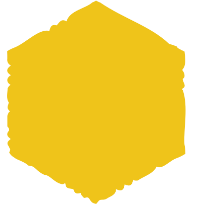 style hexagon yellow images in PNG and SVG   Icons8 Illustrations