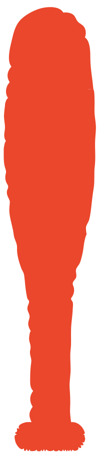 baseball bat Clipart illustration in PNG, SVG