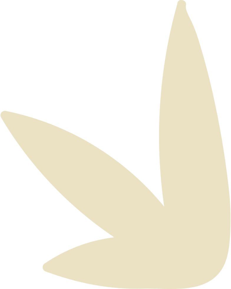 Illustration clipart bush aux formats PNG, SVG