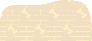 style background with a bone images in PNG and SVG   Icons8 Illustrations