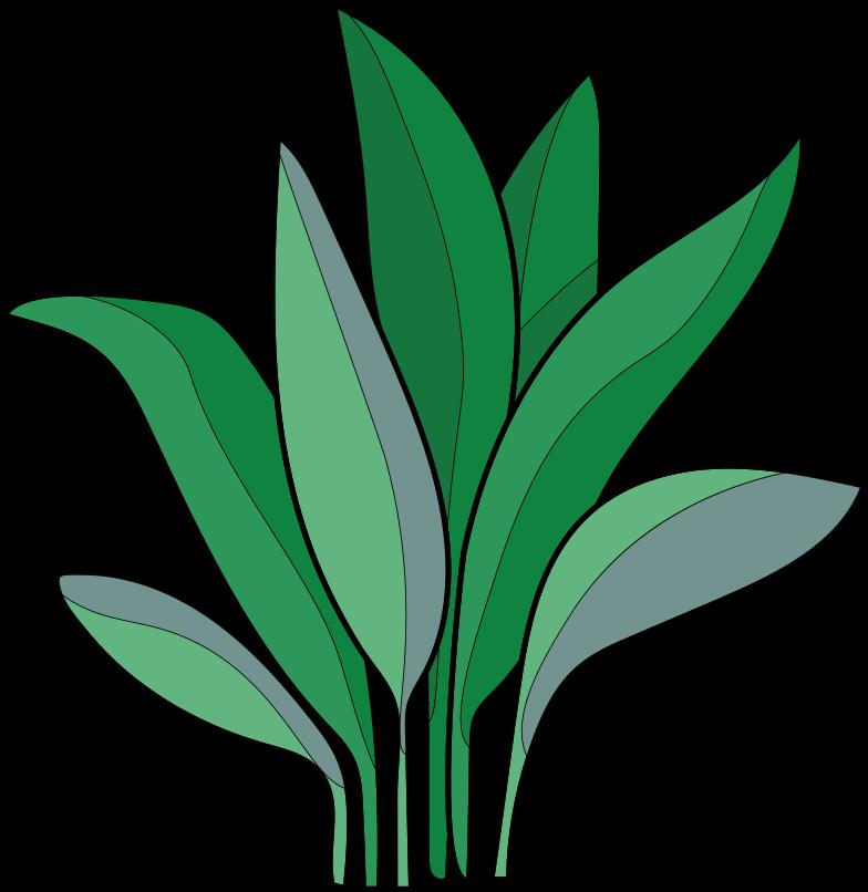 Style  plante domestique Images vectorielles en PNG et SVG | Icons8 Illustrations