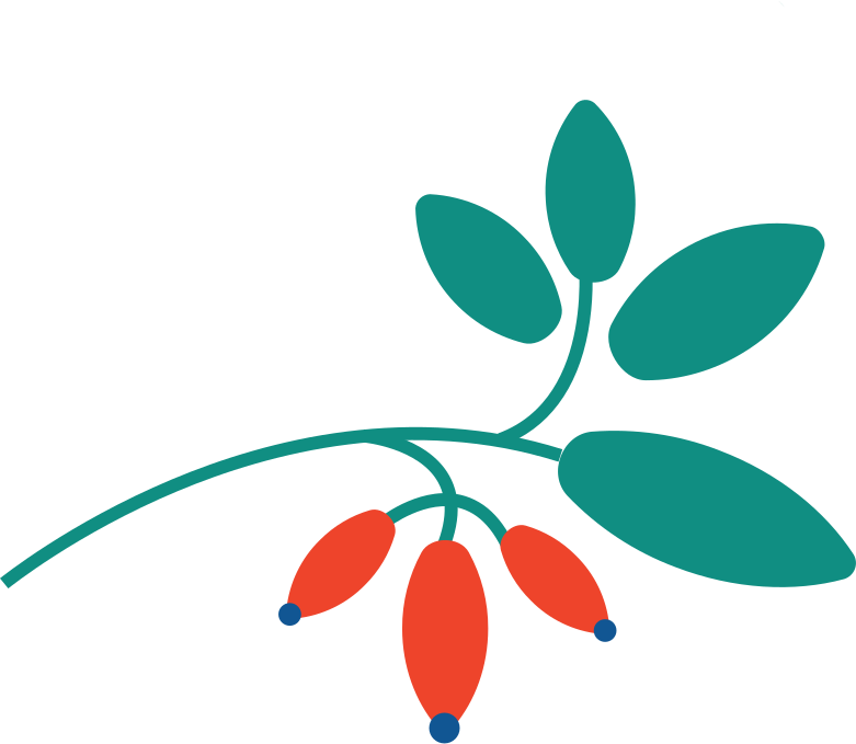 branch berry Clipart illustration in PNG, SVG