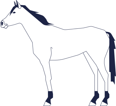 style horse images in PNG and SVG | Icons8 Illustrations