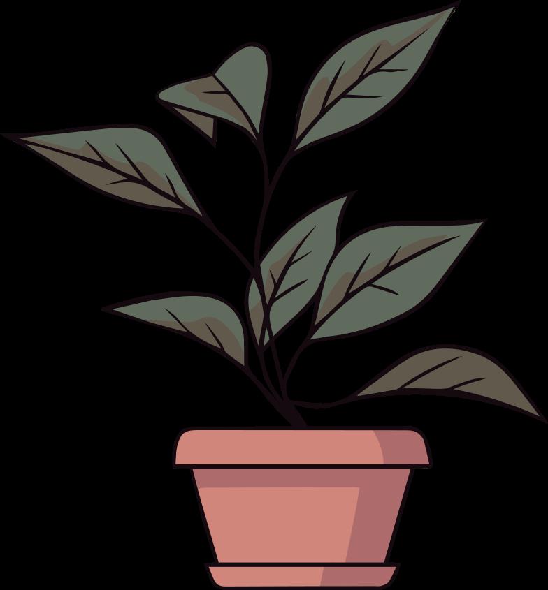 design  plant Clipart illustration in PNG, SVG