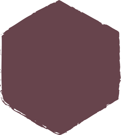 style hexadon-brown images in PNG and SVG | Icons8 Illustrations