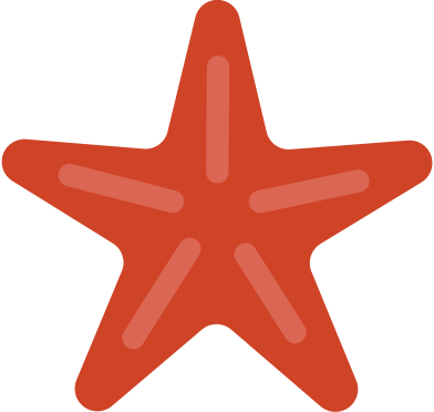 style seashell star images in PNG and SVG | Icons8 Illustrations