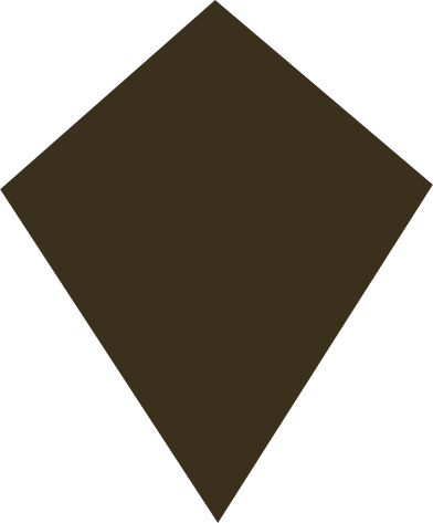style kite brown images in PNG and SVG | Icons8 Illustrations