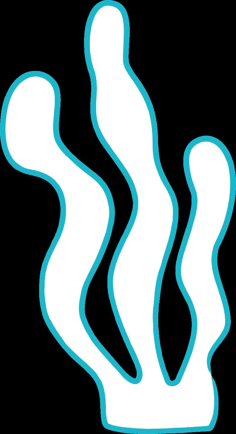 seaweeds Clipart illustration in PNG, SVG
