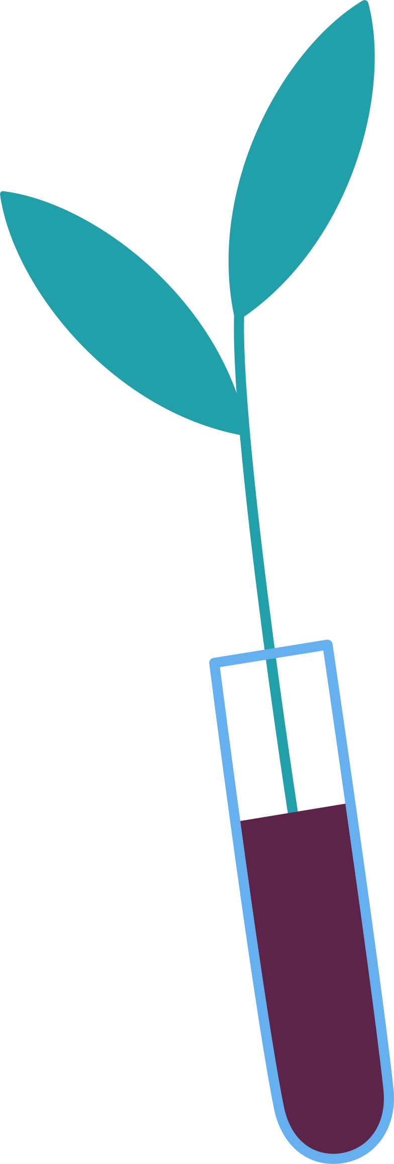 plant in test tube Clipart illustration in PNG, SVG