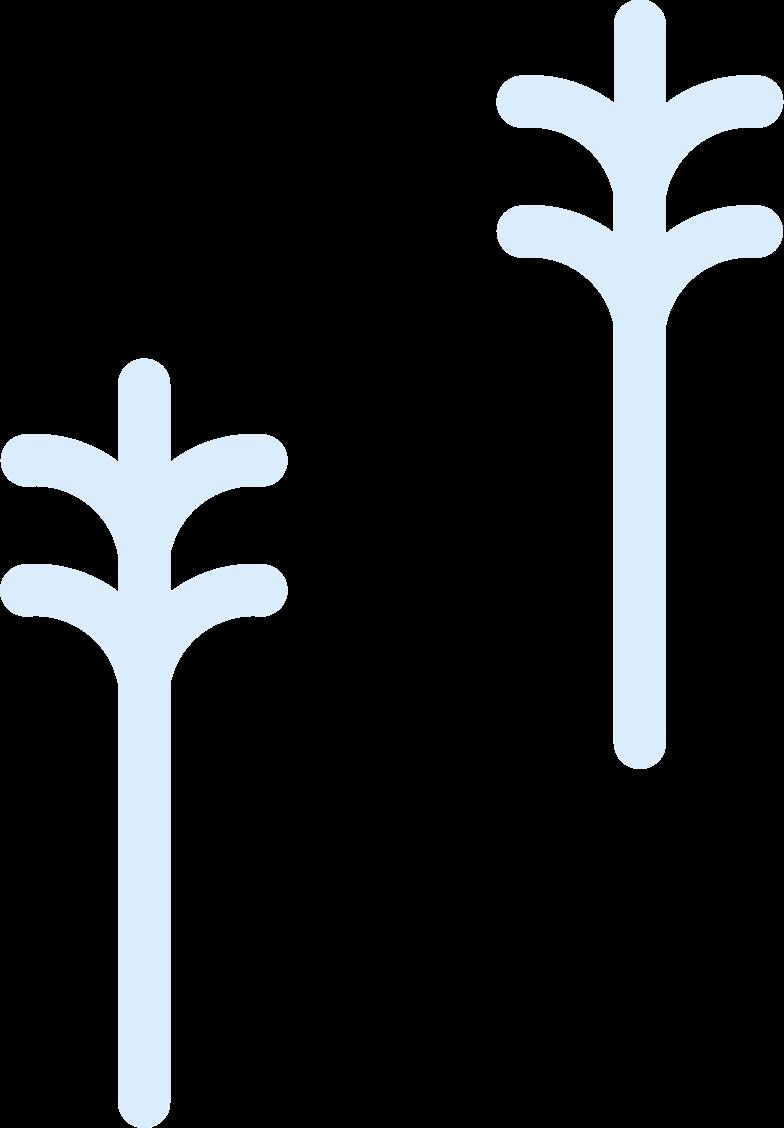 Imágenes vectoriales dos arbol en PNG y SVG estilo  | Ilustraciones Icons8