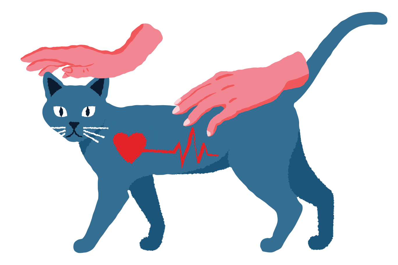Veterinary Clipart illustration in PNG, SVG