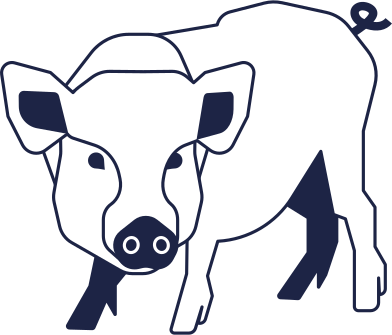 style schwein images in PNG and SVG | Icons8 Illustrations
