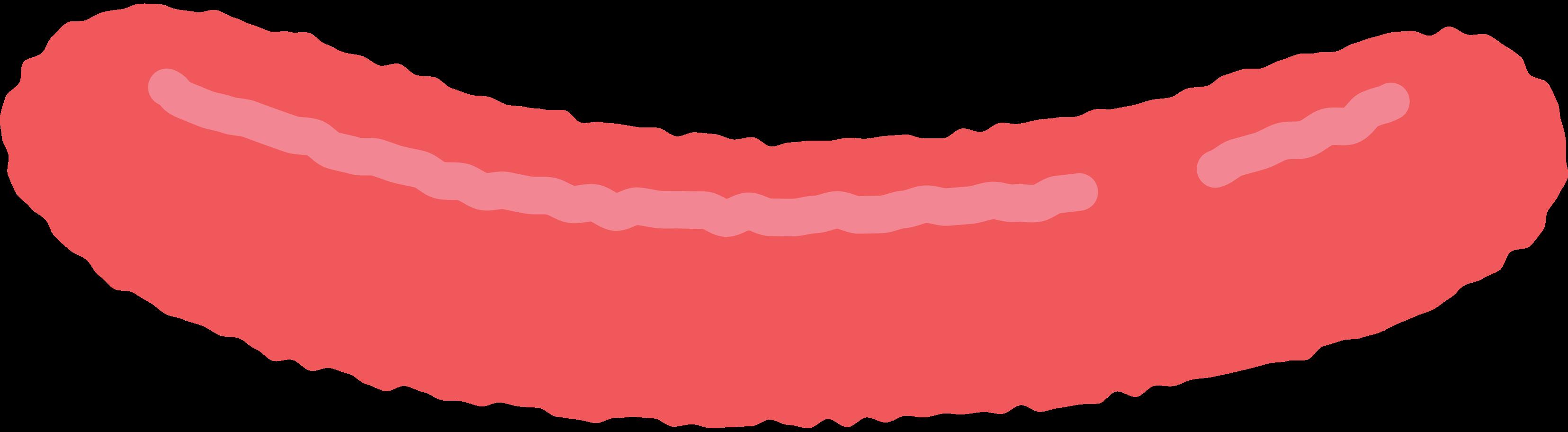 sausage Clipart illustration in PNG, SVG