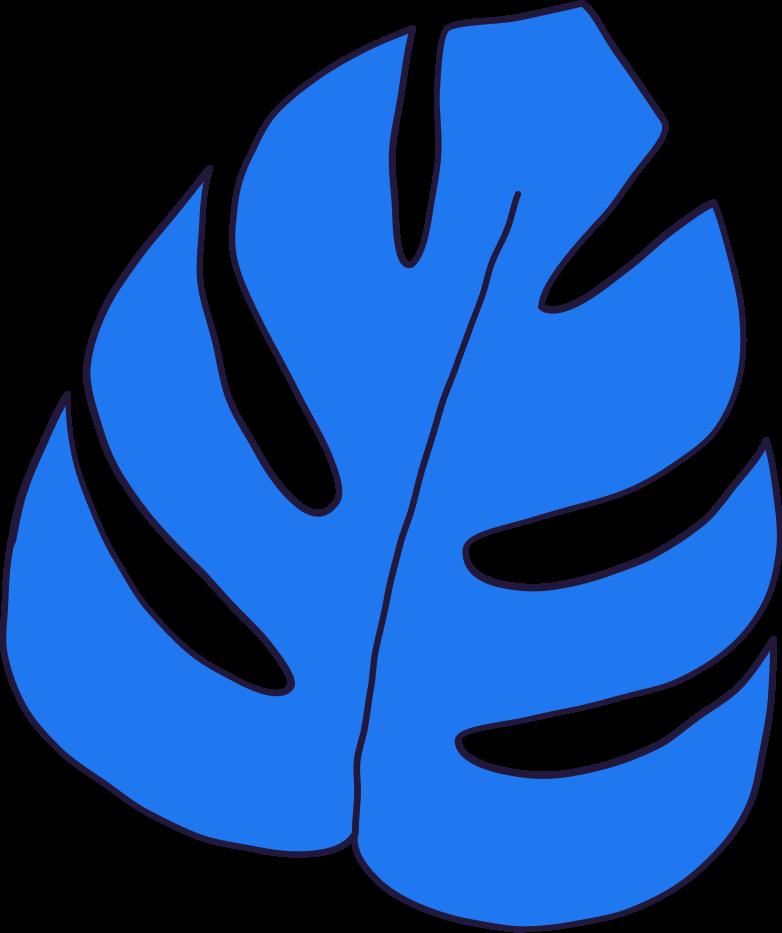 monstera leaf Clipart illustration in PNG, SVG
