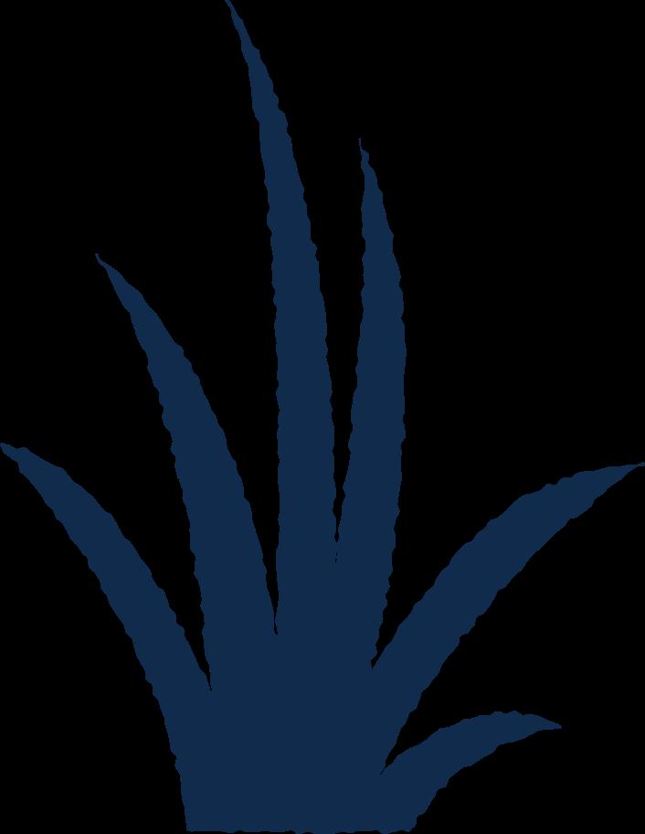 Style  herbe Images vectorielles en PNG et SVG   Icons8 Illustrations