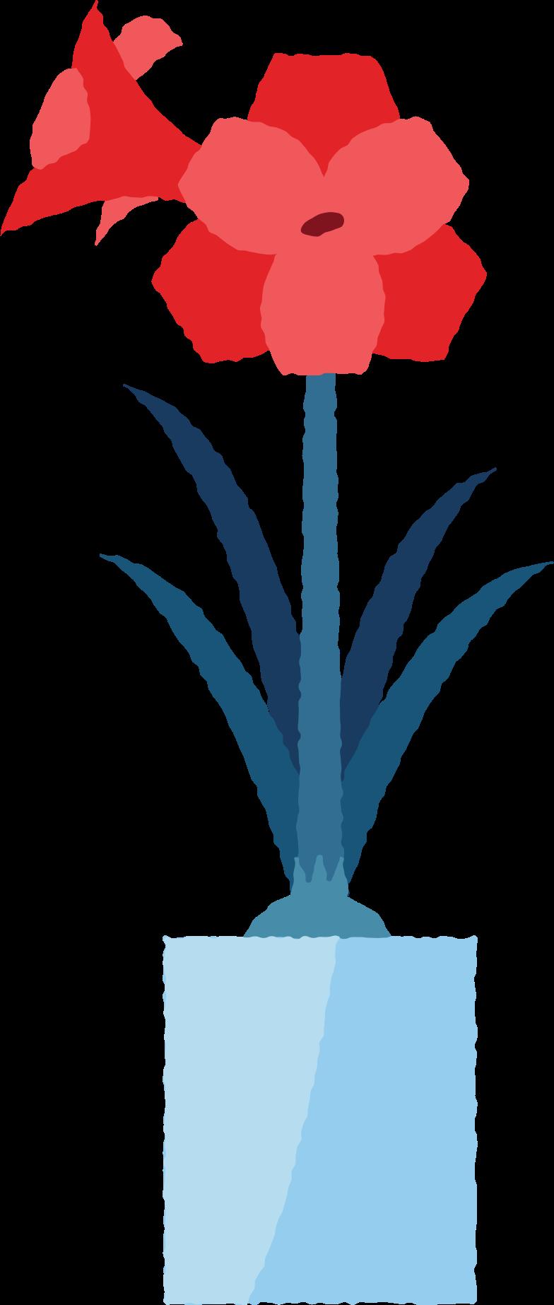 hippeastrum Clipart illustration in PNG, SVG