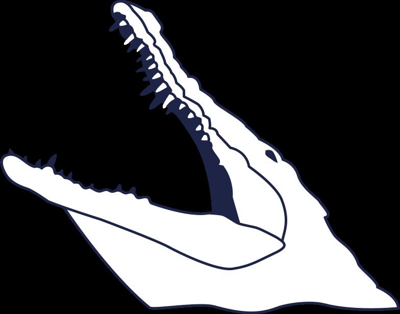 fatal error  crocodail 2 line Clipart illustration in PNG, SVG