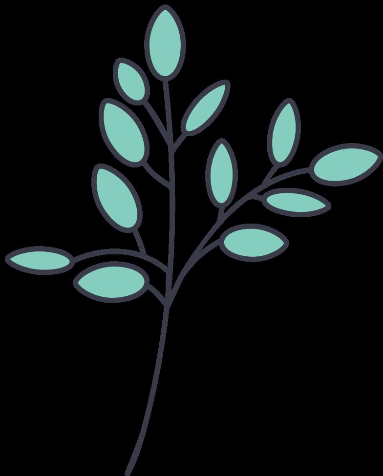 olive branch Clipart illustration in PNG, SVG
