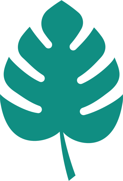 style tropical leave images in PNG and SVG   Icons8 Illustrations