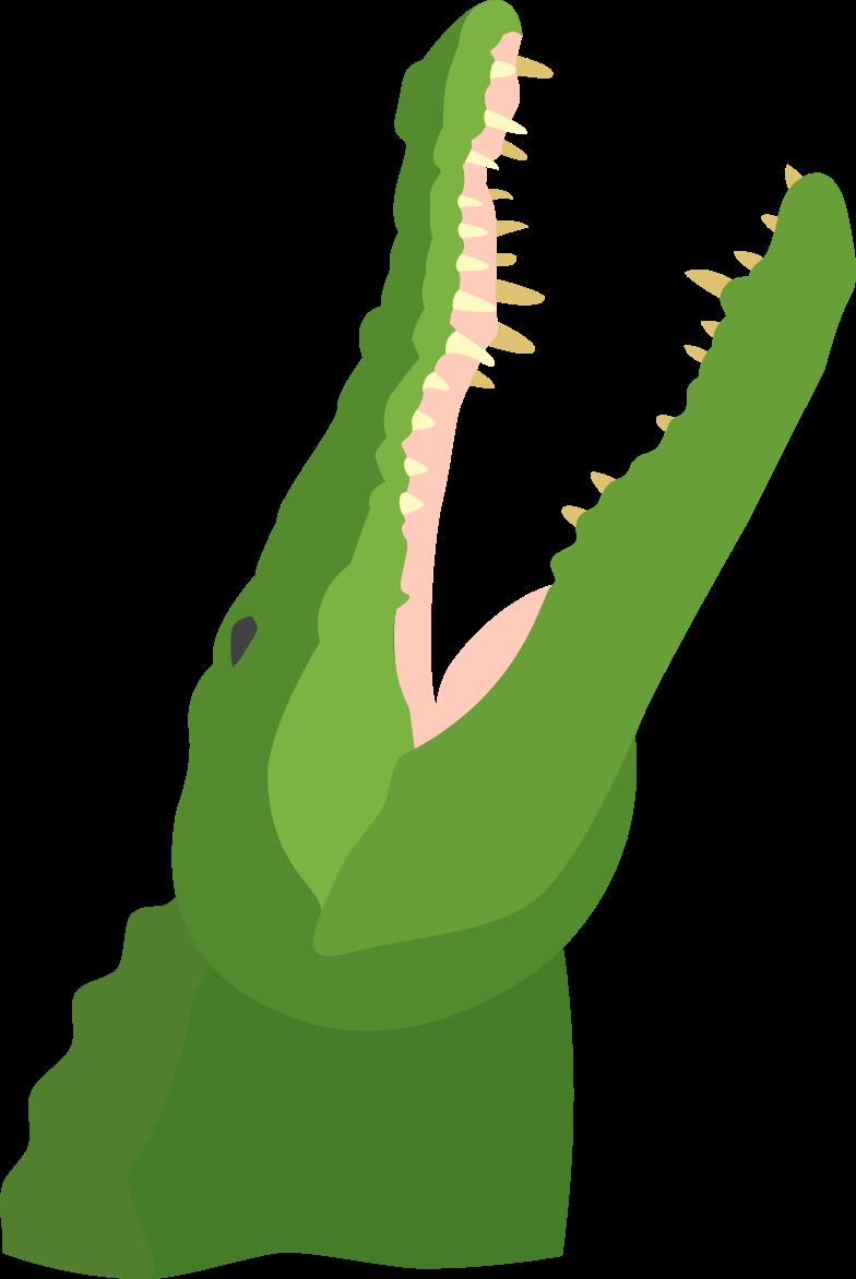 alligator Clipart illustration in PNG, SVG
