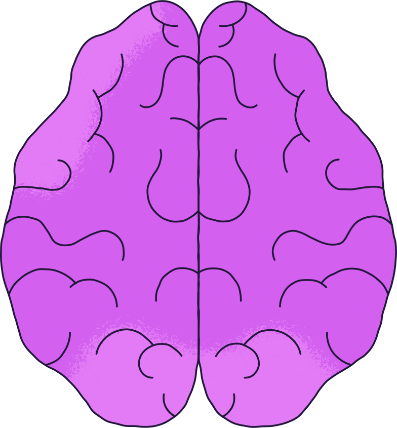 brain top Clipart illustration in PNG, SVG