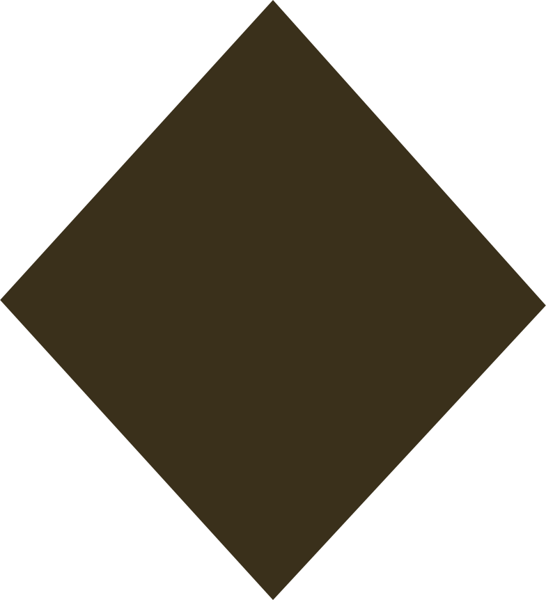 style rhombus brown Vector images in PNG and SVG | Icons8 Illustrations
