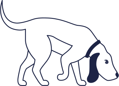 style dog line images in PNG and SVG | Icons8 Illustrations