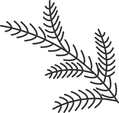 style tree branch images in PNG and SVG | Icons8 Illustrations