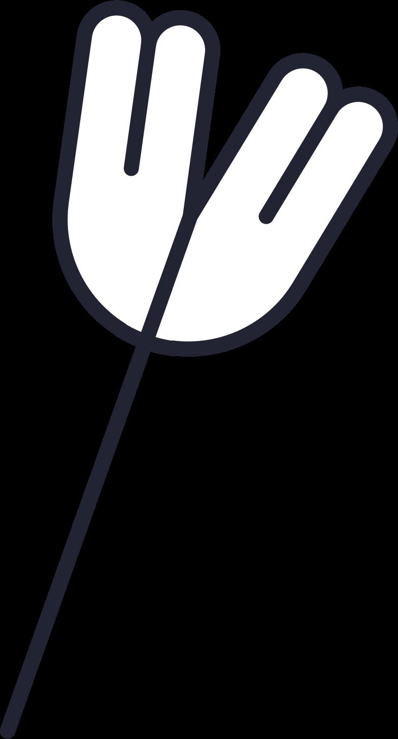 flower white Clipart illustration in PNG, SVG