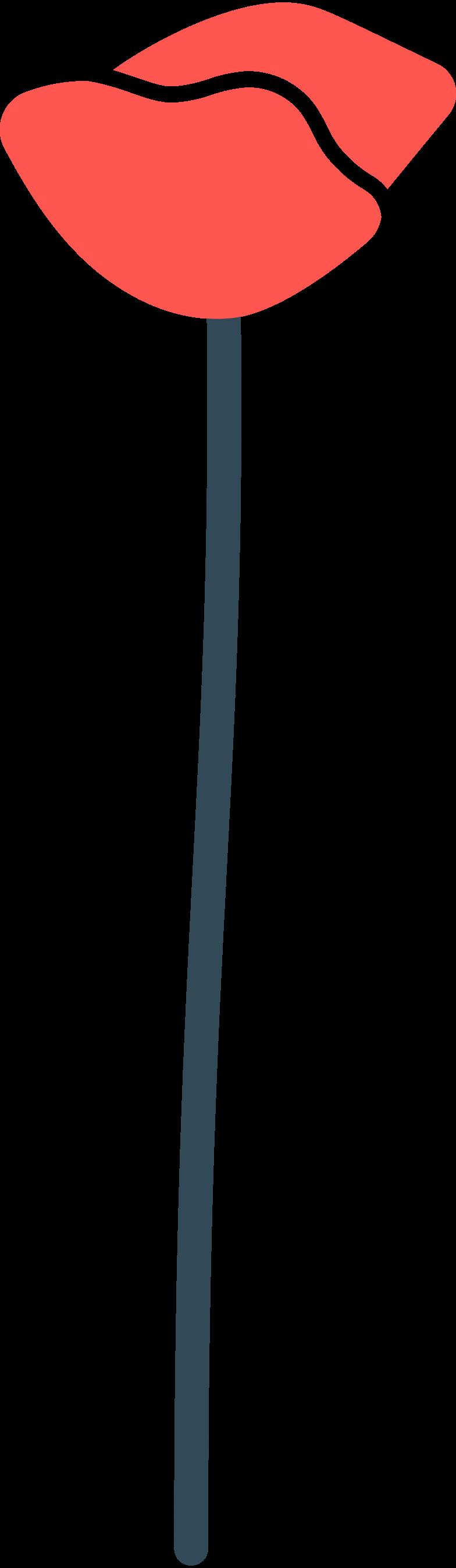 poppy Clipart illustration in PNG, SVG