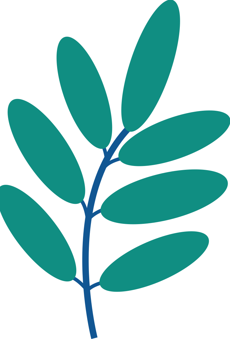 tree branch Clipart illustration in PNG, SVG