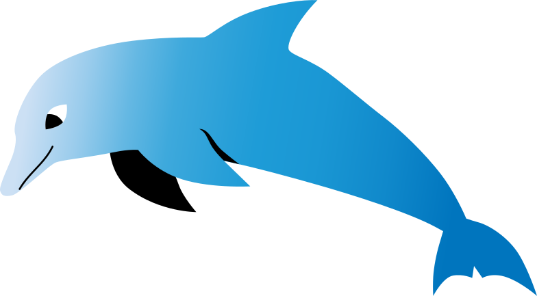 dolphin Clipart illustration in PNG, SVG