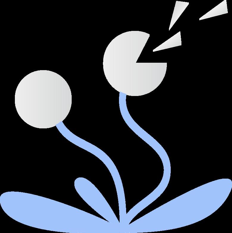 dandelions Clipart illustration in PNG, SVG