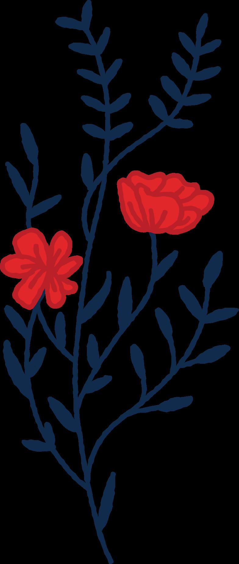 floral Clipart illustration in PNG, SVG