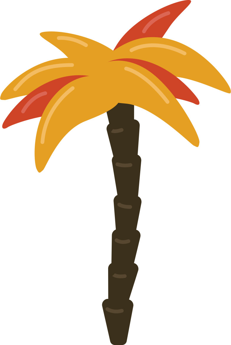 palm tree Clipart illustration in PNG, SVG