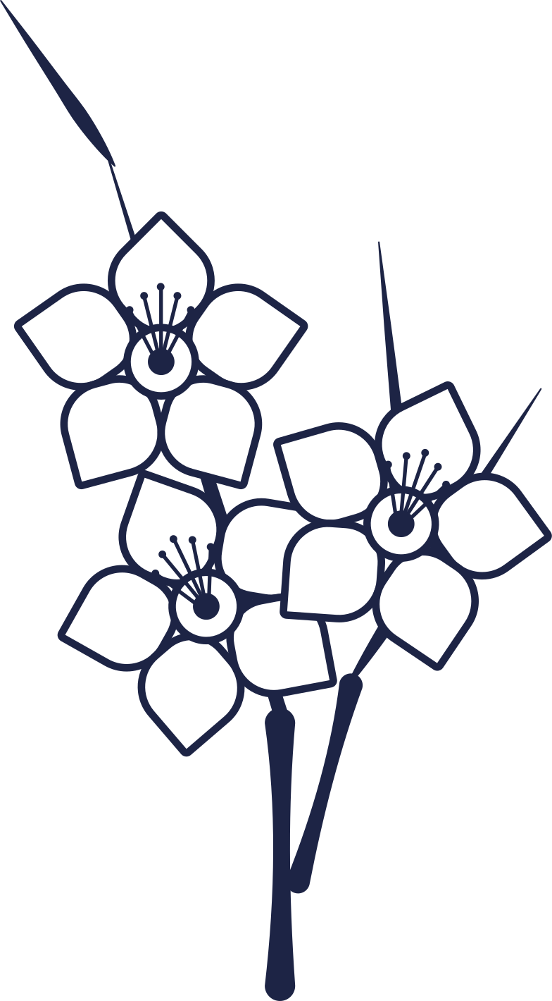 bouquet Clipart illustration in PNG, SVG