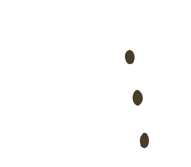 style shirt elements- images in PNG and SVG   Icons8 Illustrations