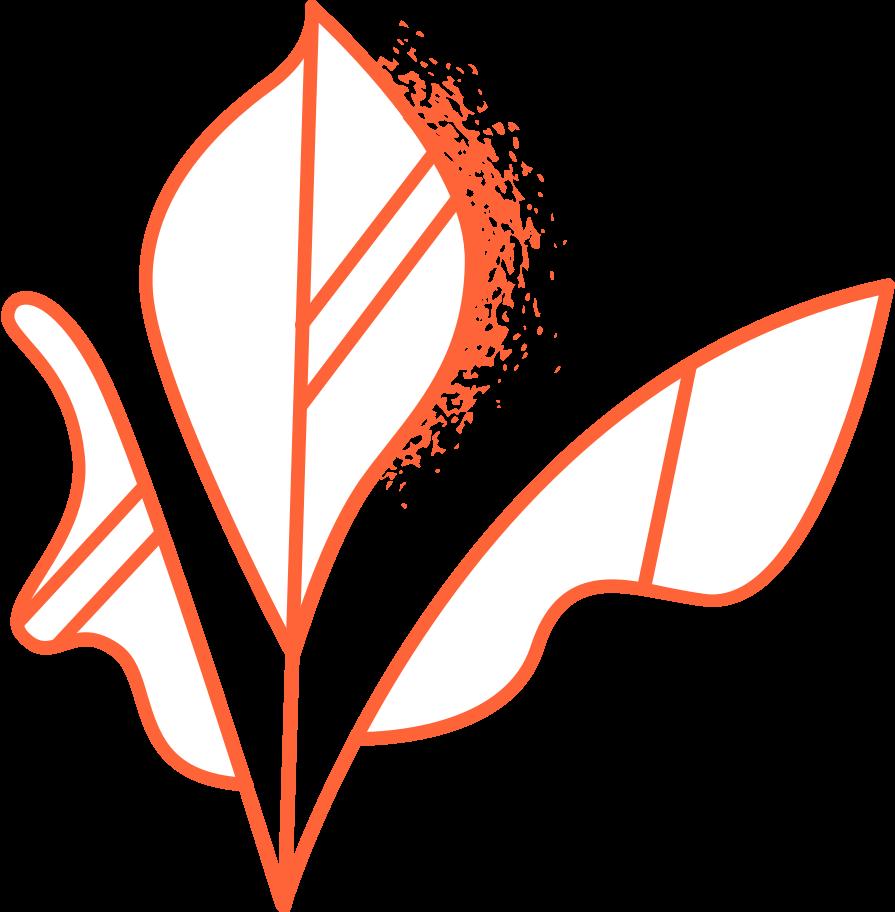 programming  leaves Clipart illustration in PNG, SVG