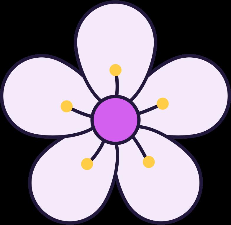 sakura flower Clipart illustration in PNG, SVG