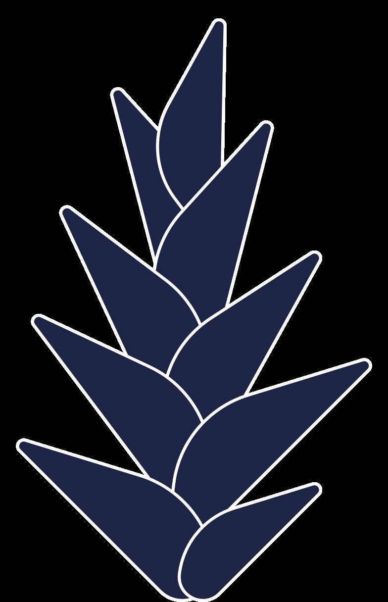 PNGとSVGの  スタイルの 熱帯の花 ベクターイメージ | Icons8 イラスト
