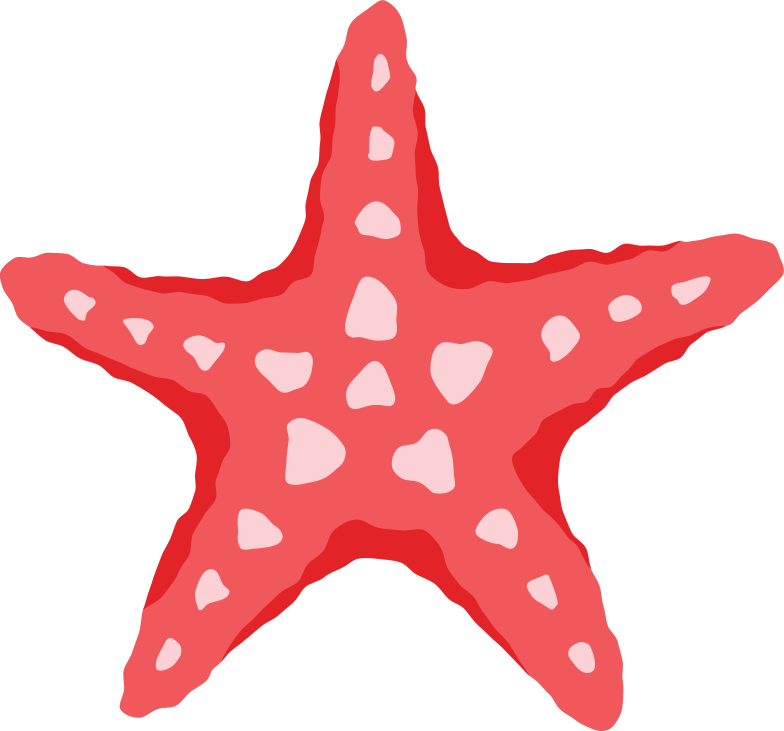 red sea star top Clipart illustration in PNG, SVG