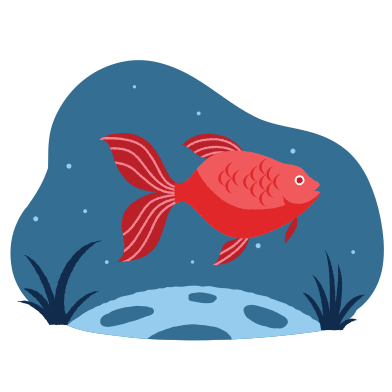 style Fish in the water images in PNG and SVG | Icons8 Illustrations