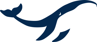 style whale images in PNG and SVG | Icons8 Illustrations